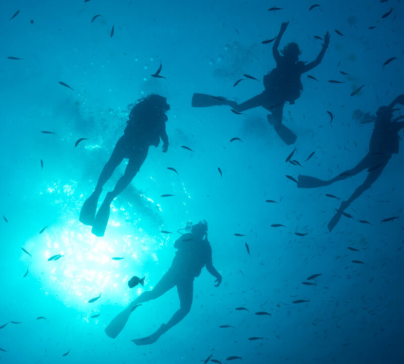 four scuba divers