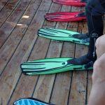 diving Multicolor fins