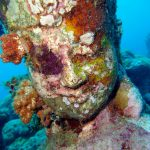 Head statue covered by coral