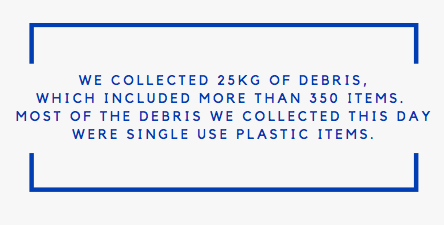 Information on collected trash