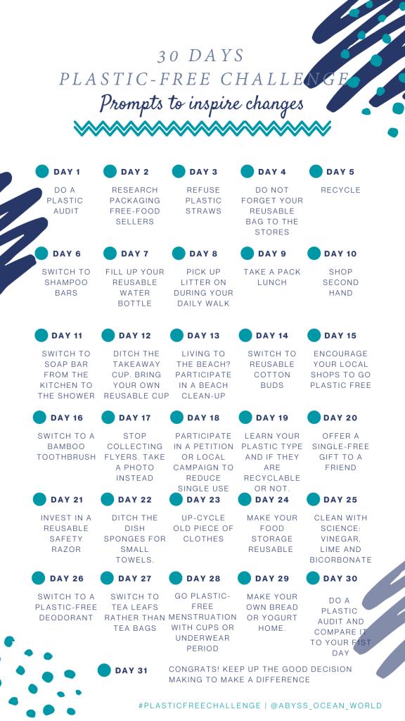 Plastic-free life audit over 31 days