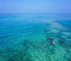 Menjangan and Pemuteran Snorkeling Spot